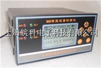 WB-2100智能流量积算仪 WK