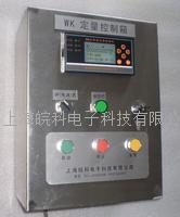 盐酸定量加料设备 WK