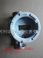 氢气表 HLZZ/LZD15-200