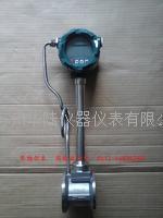 气体流量计 HLLUGB15-1000