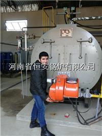 锅炉参数价格 燃气蒸汽锅炉 WNS