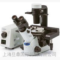 实验室常规倒置显微镜_奥林巴斯OlympusCKX53生物显微镜