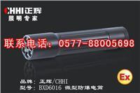 BXD6016微型防爆电筒、微型防爆强光手电筒-温州防爆手电筒厂家 BXD6016