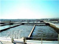 食品废水处理 NK-900