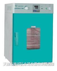 烘箱/烤箱/电热恒温鼓风干燥箱 DHG-9070A