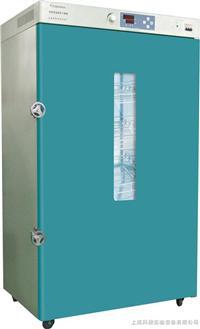 鼓风干燥箱 DHG-9620B