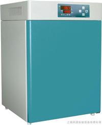 恒温培养箱 DHP-9162