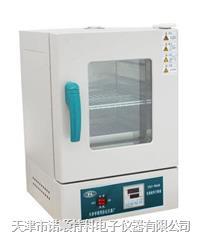 电热恒温干燥箱  202-0A