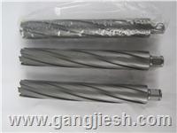 33*200高效深孔套料钻   钢板钻   空心钻   磁力钻机钻头 33*200