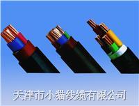 天津市小猫线缆电缆 YJV