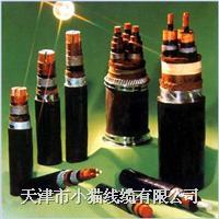 天津小猫线缆控制电缆 KVV