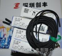 Panasonic松下GX-3S-R