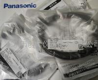 Panasonic日本松下电源线CN-73-C2