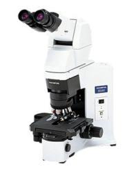 奥林巴斯相差显微镜BX45-72P15
