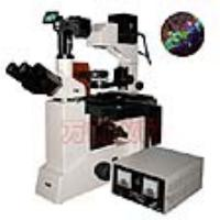 上海万衡数码型落射荧光显微镜M50D
