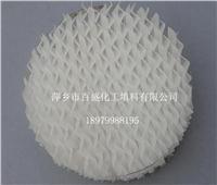 萍鄉百盛塑料規整波紋填料 125-500Y