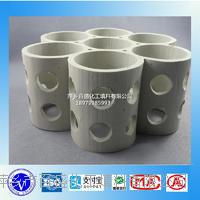 萍鄉百盛輕瓷填料七環規整填料 輕瓷多齒環 XA-1 205 15 12 60 124 79 330