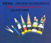 CEV82船用LKSM-HF3*1.5镀锡铜丝铠装电线电缆