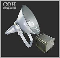 防震投光灯 NTC9210