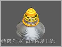 OHBF810G LED30W50w100W120w防爆工矿灯照明灯 OHBF810G