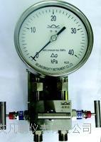 布莱迪 双膜片高静压差压表YCA YCA-100