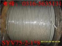 微微同轴电缆 SYFVZ-LC-75-1-1*16