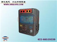 绝缘电阻测试仪 GY513