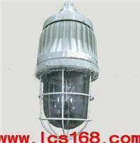 隔爆型防爆灯  BXS02-IIC