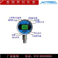 XR800S精密数字压力表