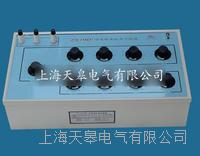 ZX79D+型兆欧表标准电阻器 ZX79D+型