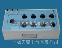 ZX79D+兆欧表标准电阻器 ZX79D+型