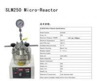 250ml微型 反应釜
