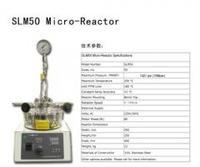 50ml 微型 反应釜