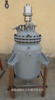 100ML不锈钢微型高压反应釜