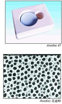 Anopore無機膜(Anodisc)