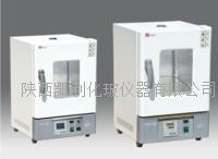泰斯特電熱恒溫幹燥箱WHL-45(B)E