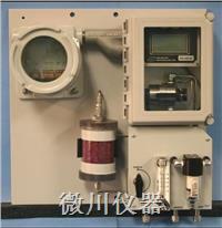 GPR-2800AIS防爆氧分析仪