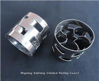 SS304 Pall Ring