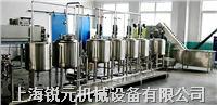中小型果蔬果汁饮料生产线 RY