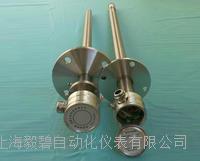 EBZO-5-FS/G 高温防腐氧化锆探头 EBZO-5-FS/G