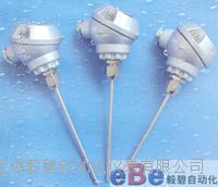 无固定装置铠装热电偶WRNK-121/WRNK-131 WRNK-121/WRNK-131