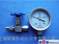 不锈钢压力表截止阀JJM1-160P/针形阀316材质DN10 JJM1-160P