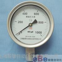 上海毅碧YE-100B不锈钢膜盒压力表