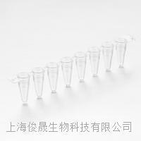 透明0.1ml低型荧光定量PCR八连排 GP-LN8010T
