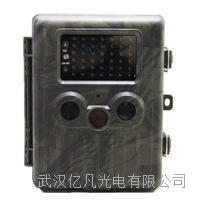欧尼卡AM-990V野生动物监测相机参数 AM-990V