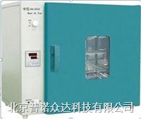 鼓风干燥箱 DHG-9123A