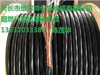 阻燃铠装计算机屏蔽电缆ZR-DJYPVRP22-8*2*1.0【维尔特牌电缆】