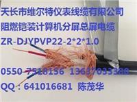 ZR-DJYPVPR22-2*2*1.5阻燃铠装计算机屏蔽电缆【维尔特牌电缆】13637033380 ZR-DJYPVPR22-2*2*1.5