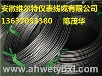 热电偶铠装丝-材质GH3030- 分度号K    双支 Φ4.0mm