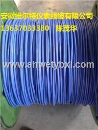 济南市批发维尔特牌电缆 IA-ZR-DJFGP1R-1*2*1.5 本安阻燃硅橡胶计算机屏蔽电缆